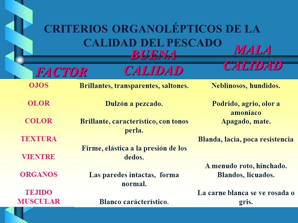 MALA CALIDAD BUENA CALIDAD FACTOR