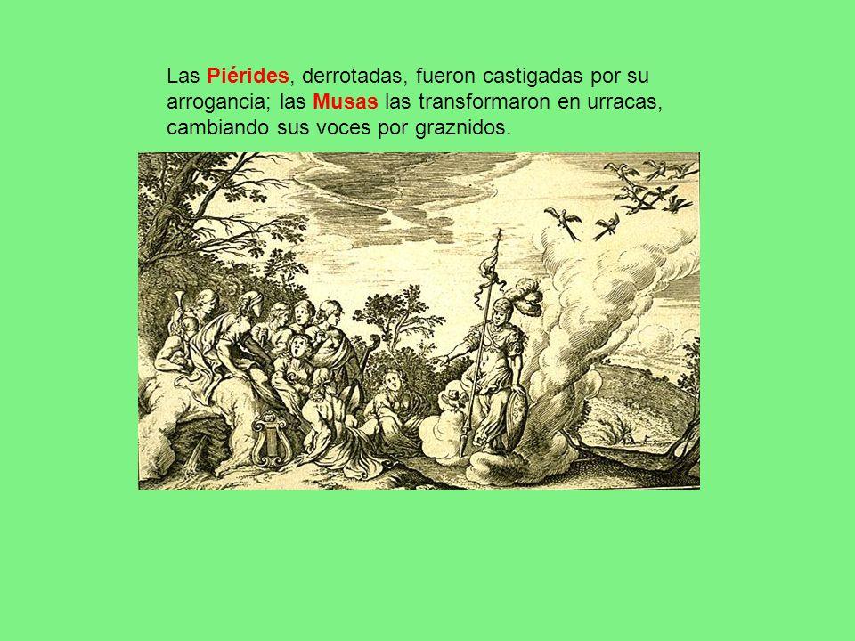 Las Piérides, derrotadas, fueron castigadas por su arrogancia; las Musas las transformaron en urracas, cambiando sus voces por graznidos.