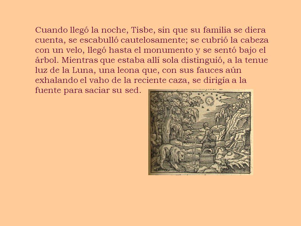 Cuando llegó la noche, Tisbe, sin que su familia se diera cuenta, se escabulló cautelosamente; se cubrió la cabeza con un velo, llegó hasta el monumento y se sentó bajo el árbol.