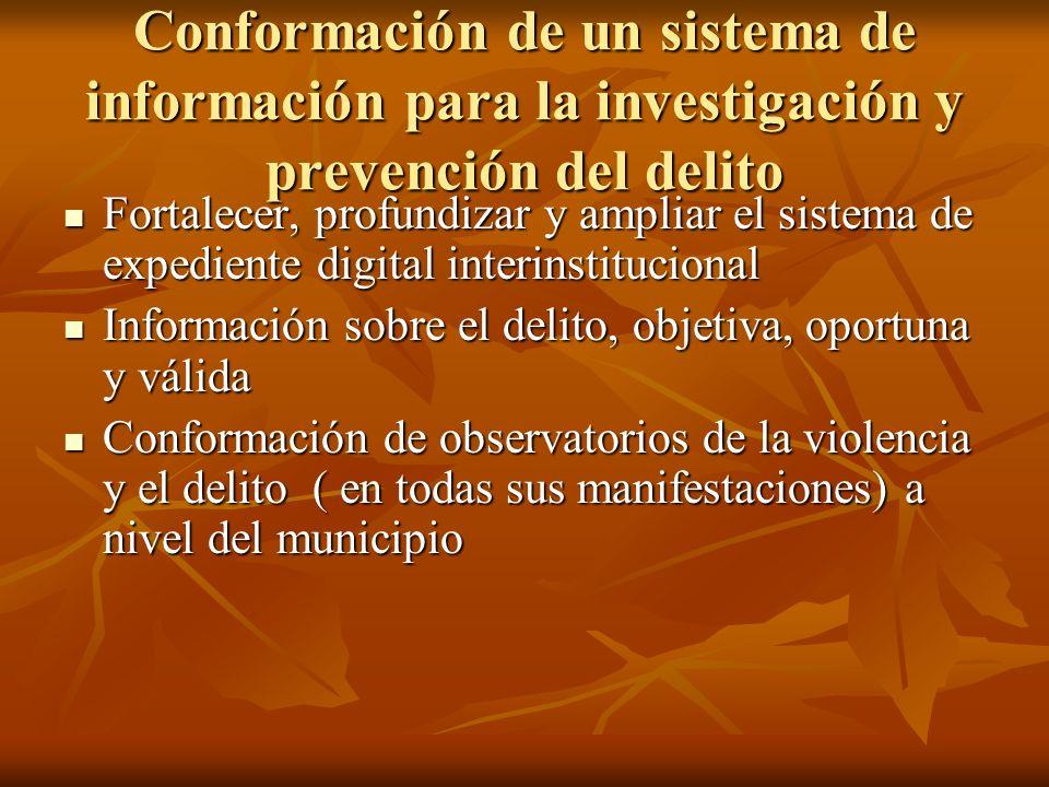 Conformación de un sistema de información para la investigación y prevención del delito