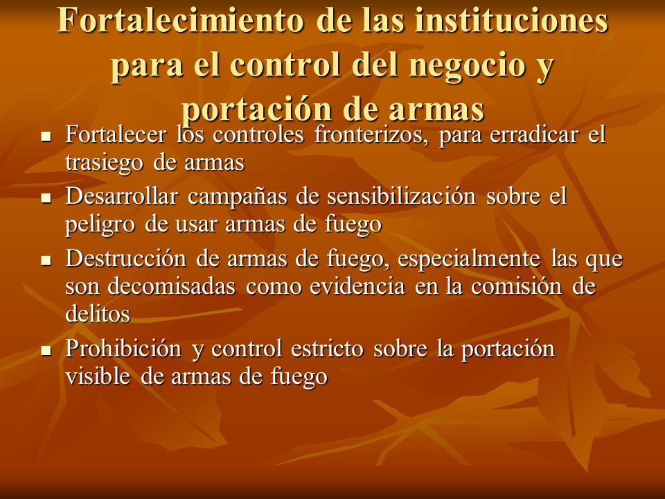Fortalecimiento de las instituciones para el control del negocio y portación de armas