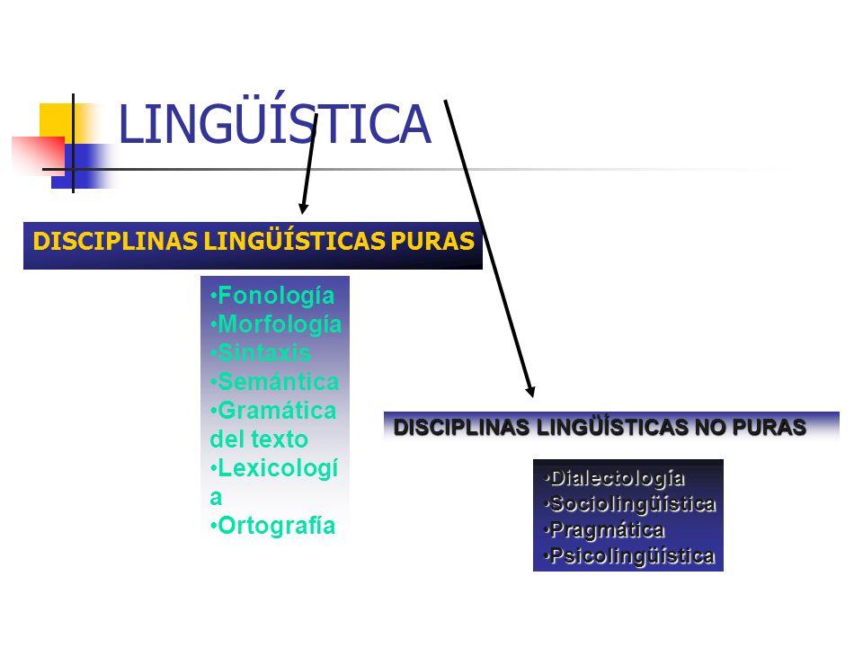 LINGÜÍSTICA DISCIPLINAS LINGÜÍSTICAS PURAS Fonología Morfología