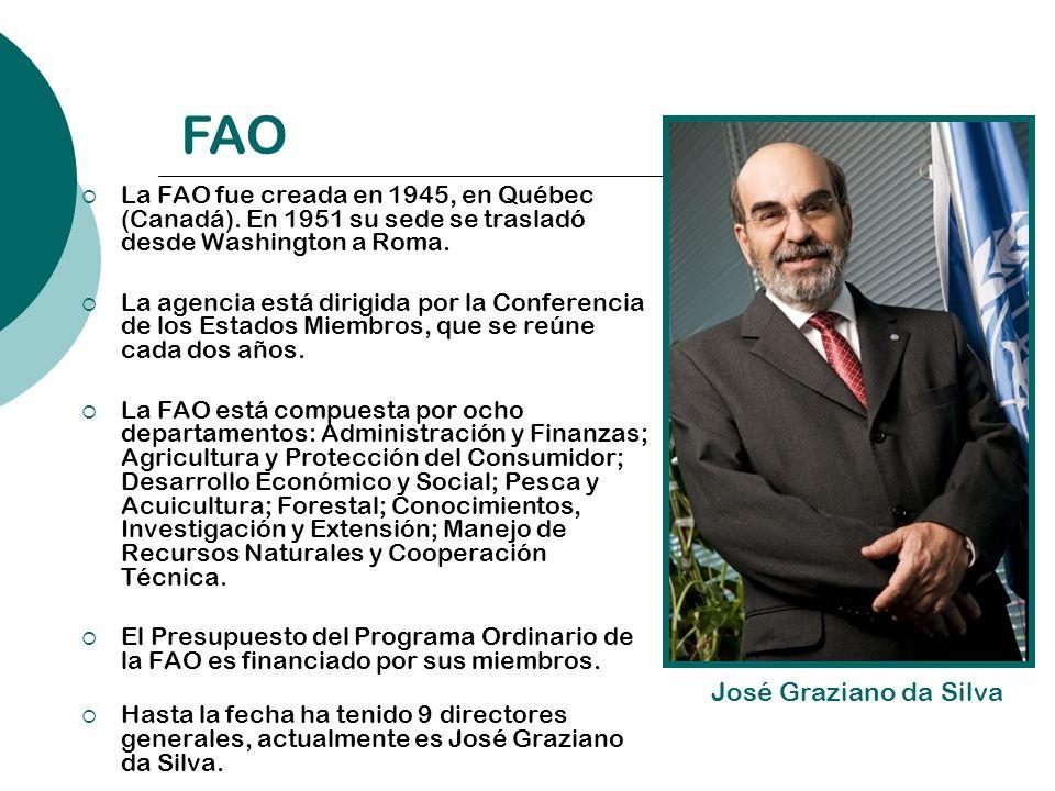 FAO José Graziano da Silva