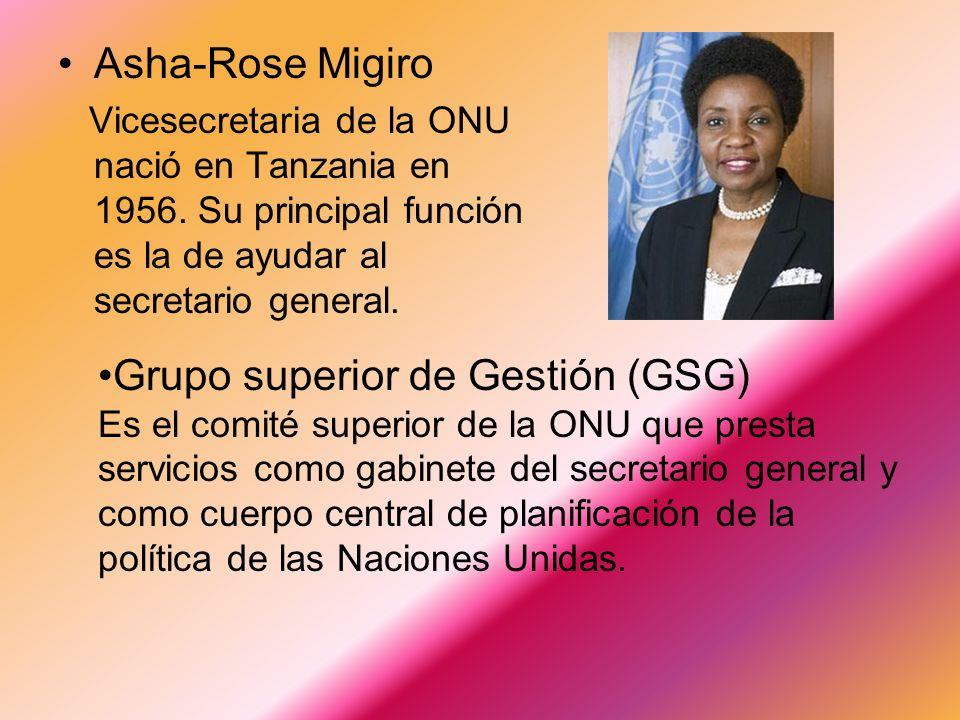 Grupo superior de Gestión (GSG)