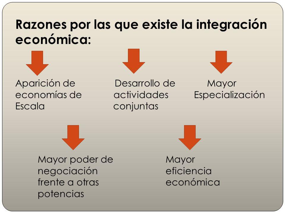 Razones por las que existe la integración económica: