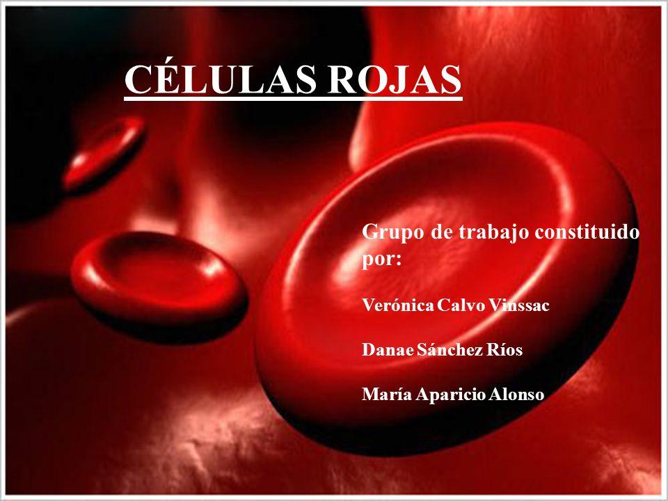 CÉLULAS ROJAS Grupo de trabajo constituido por: Verónica Calvo Vinssac