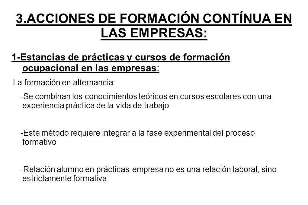 3.ACCIONES DE FORMACIÓN CONTÍNUA EN LAS EMPRESAS: