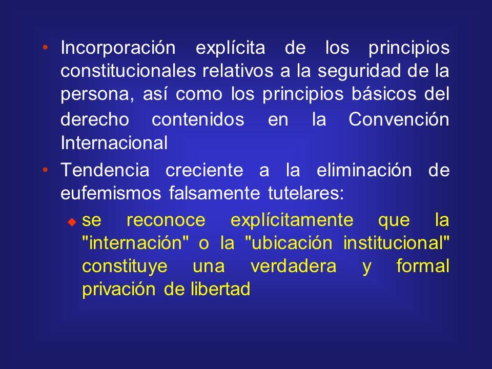 Incorporación explícita de los principios constitucionales relativos a la seguridad de la persona, así como los principios básicos del derecho contenidos en la Convención Internacional