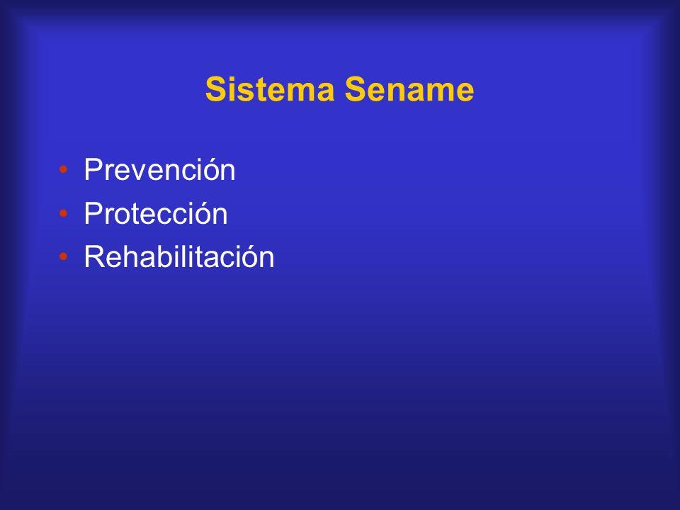 Sistema Sename Prevención Protección Rehabilitación