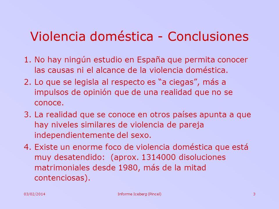 Violencia doméstica - Conclusiones
