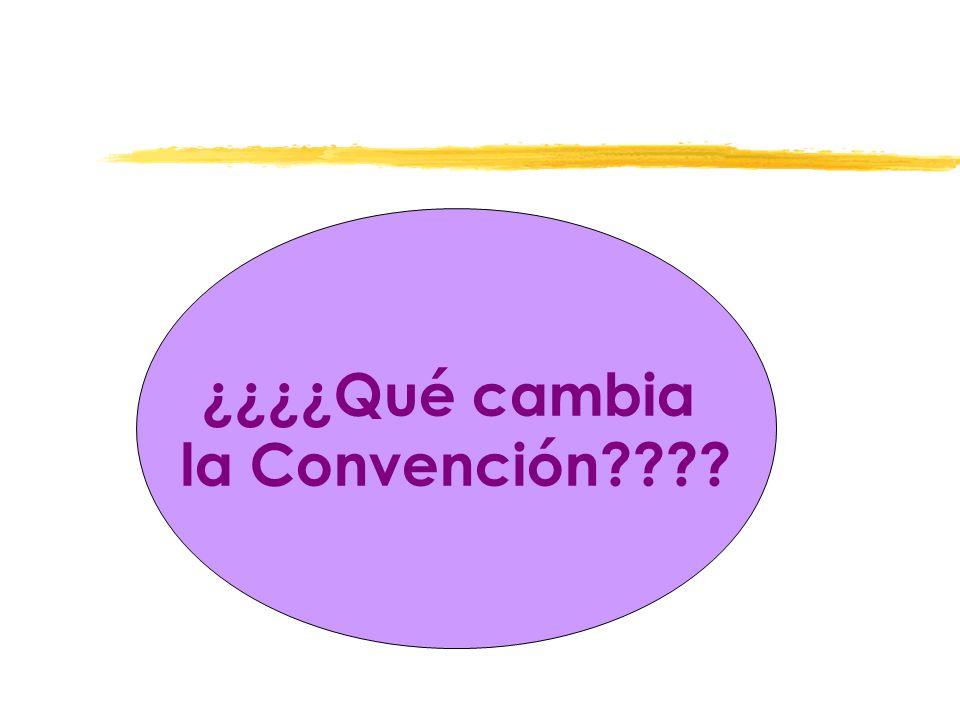 ¿¿¿¿Qué cambia la Convención