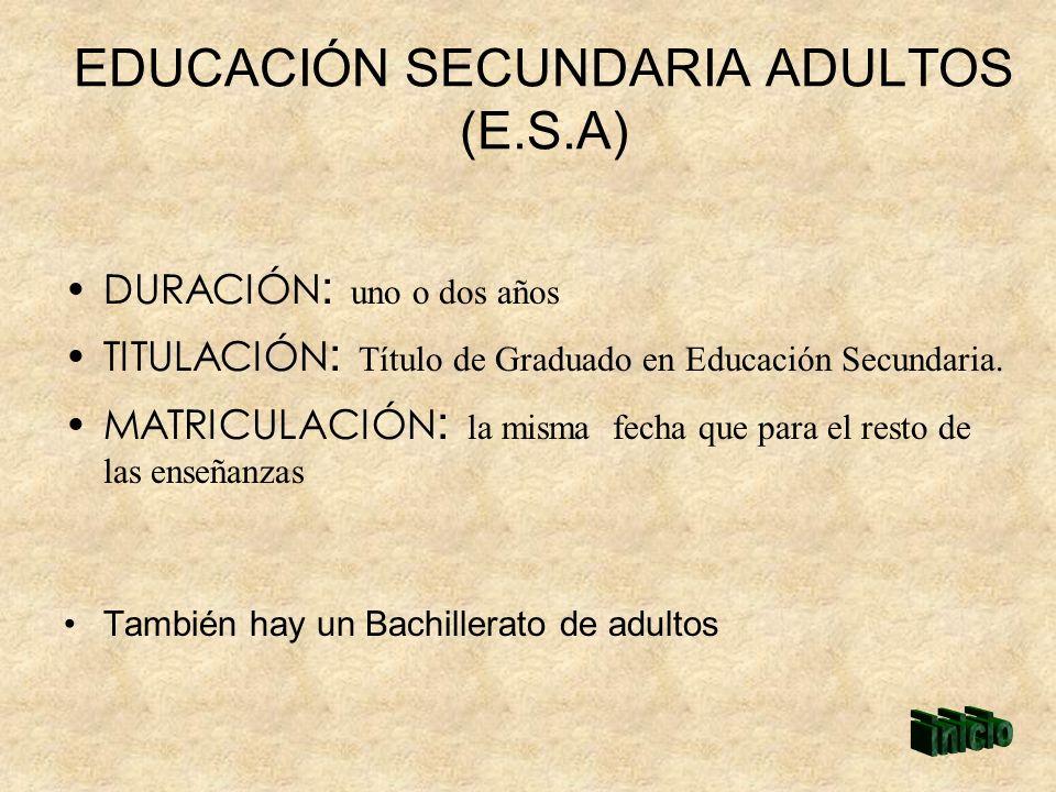 EDUCACIÓN SECUNDARIA ADULTOS (E.S.A)