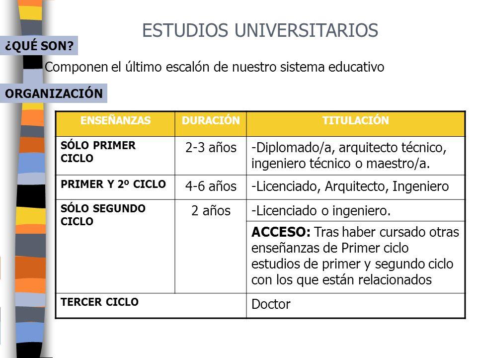 ESTUDIOS UNIVERSITARIOS