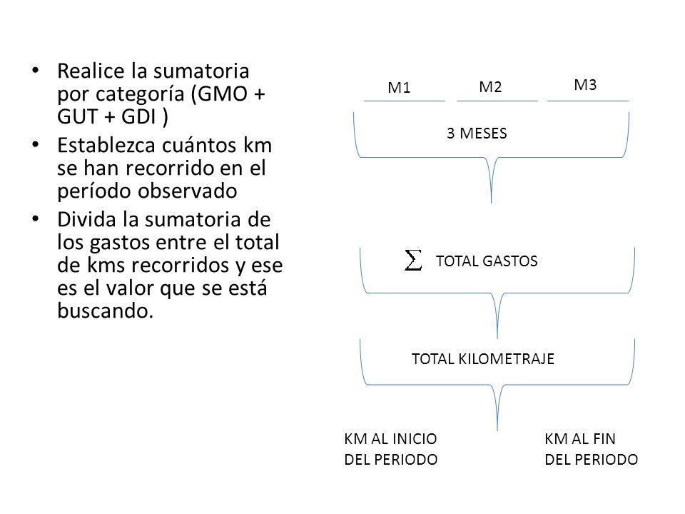 Realice la sumatoria por categoría (GMO + GUT + GDI )