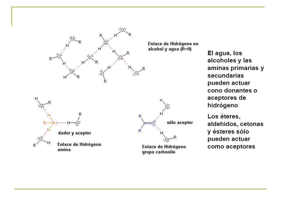 El agua, los alcoholes y las aminas primarias y secundarias pueden actuar cono donantes o aceptores de hidrógeno