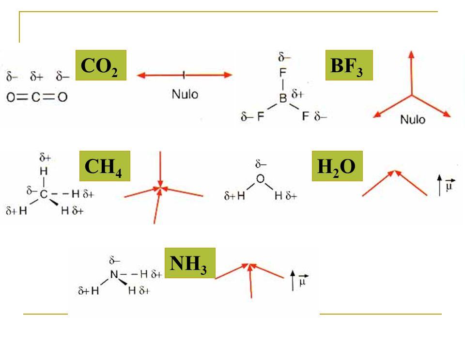 CO2 BF3 CH4 H2O NH3