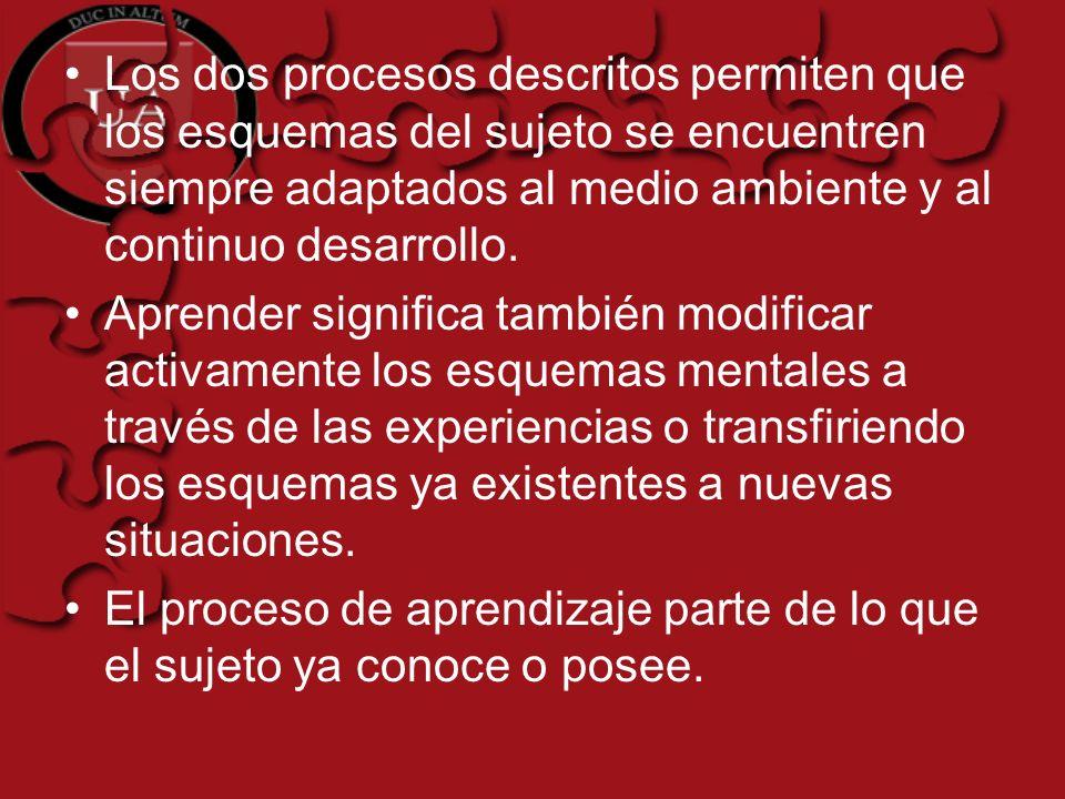 Los dos procesos descritos permiten que los esquemas del sujeto se encuentren siempre adaptados al medio ambiente y al continuo desarrollo.