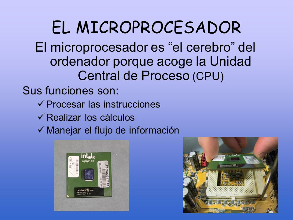EL MICROPROCESADOREl microprocesador es el cerebro del ordenador porque acoge la Unidad Central de Proceso (CPU)