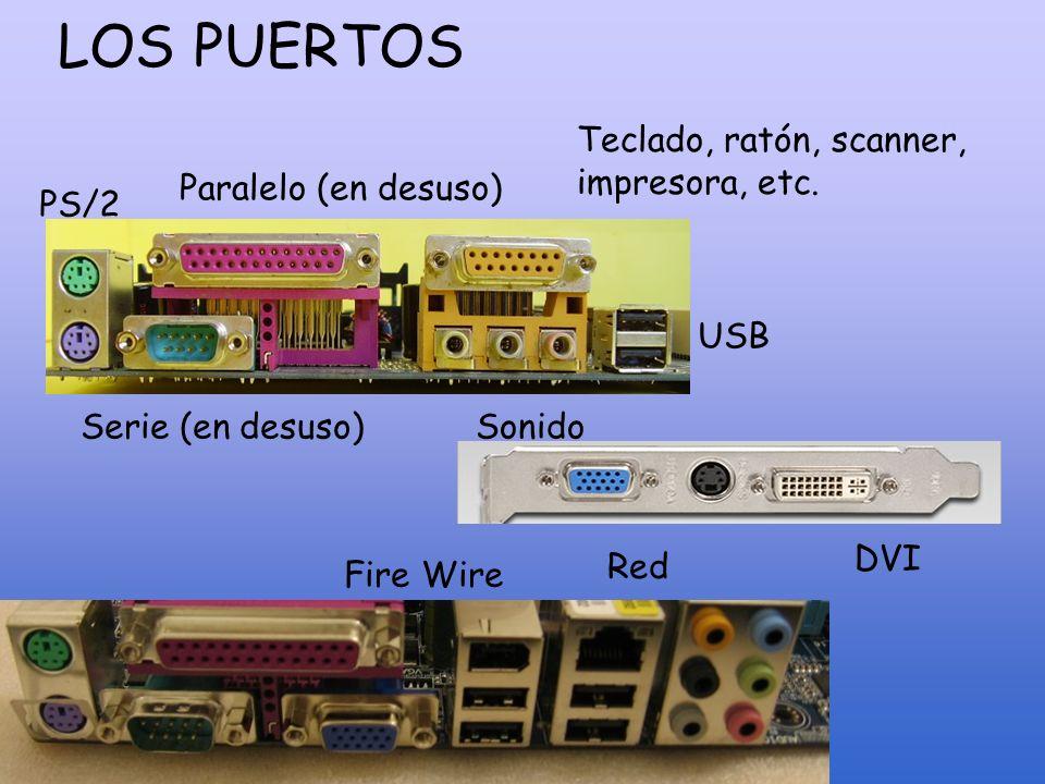 LOS PUERTOS Teclado, ratón, scanner, impresora, etc.