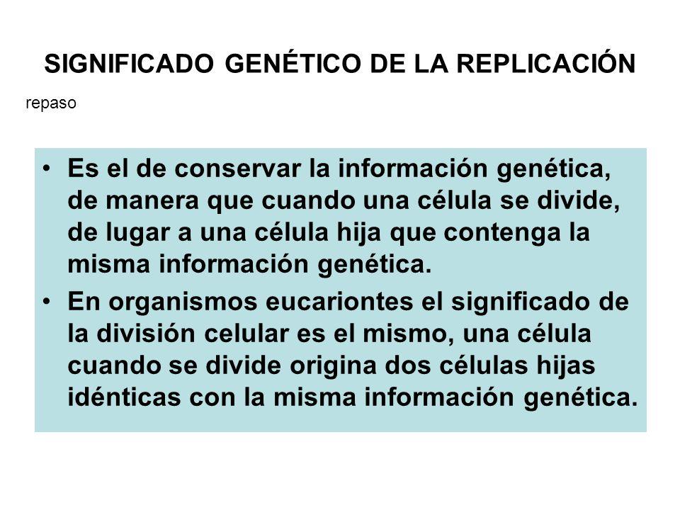 SIGNIFICADO GENÉTICO DE LA REPLICACIÓN