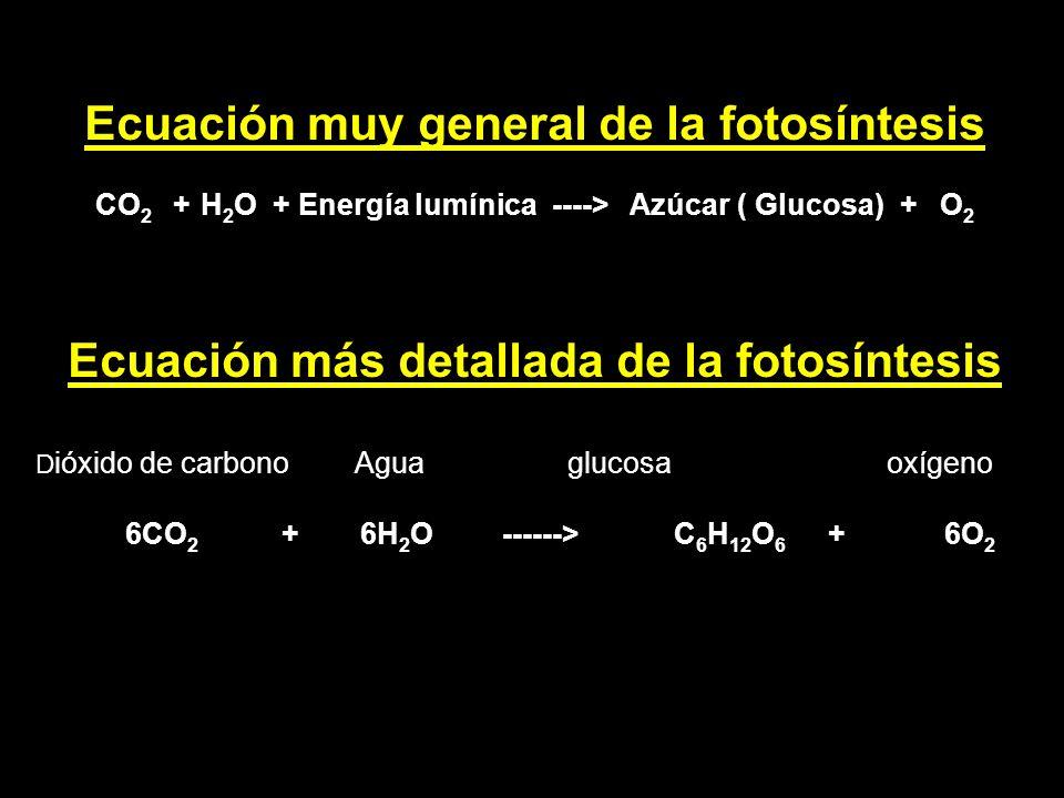 Ecuación muy general de la fotosíntesis