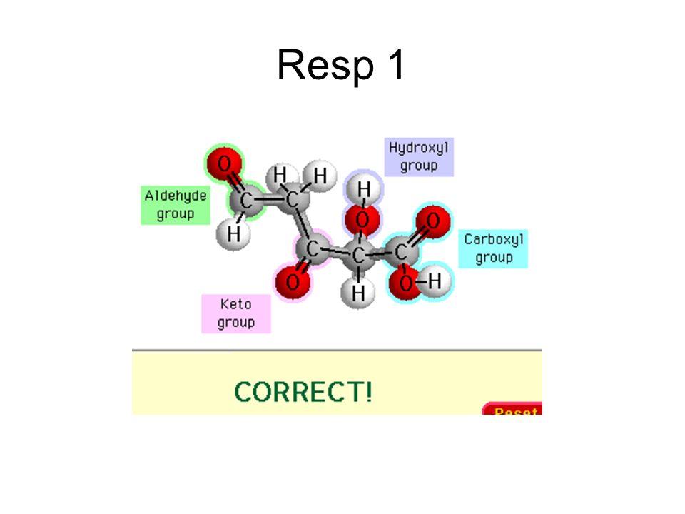 Resp 1