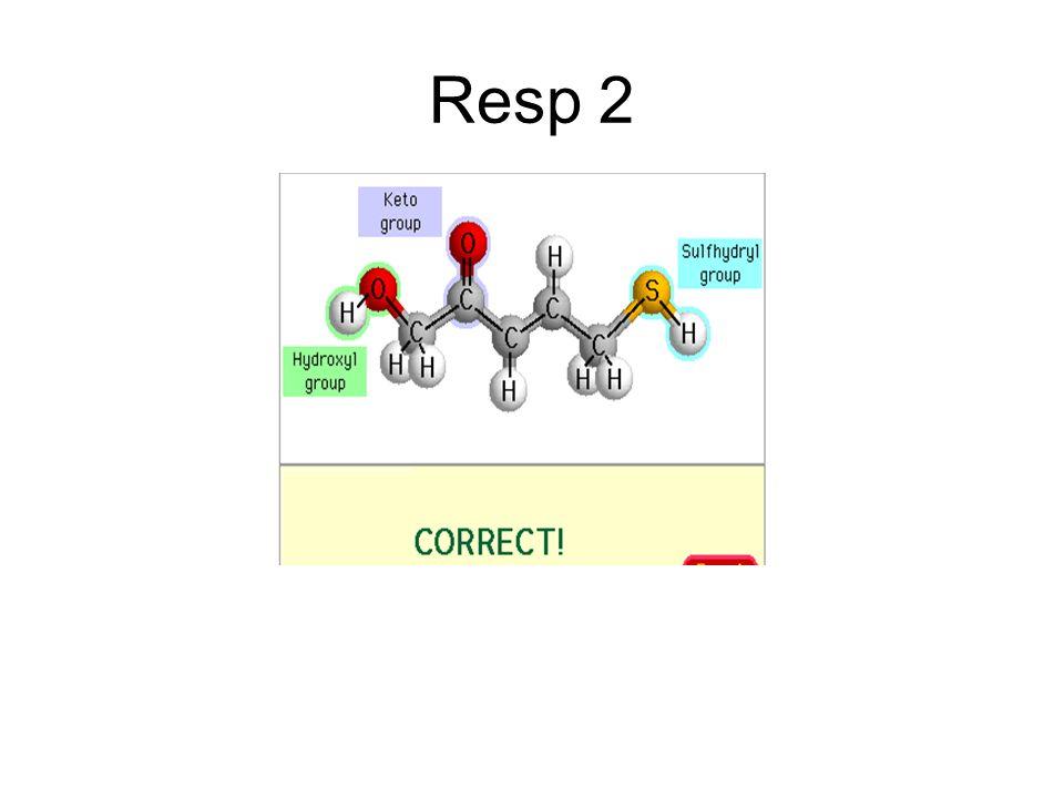 Resp 2
