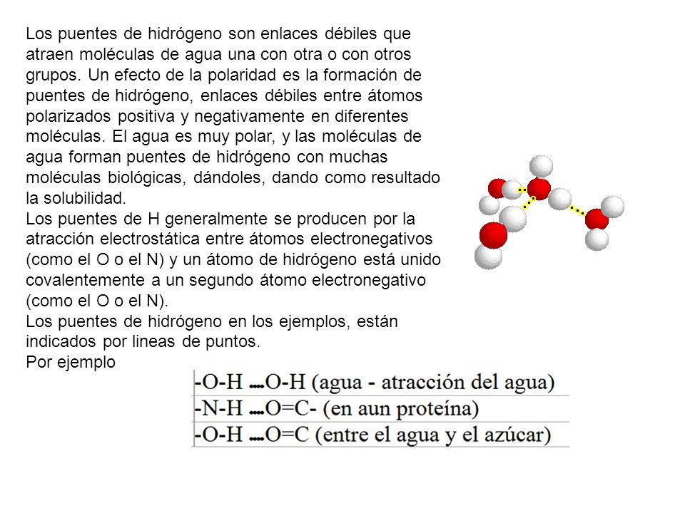 Los puentes de hidrógeno son enlaces débiles que atraen moléculas de agua una con otra o con otros grupos. Un efecto de la polaridad es la formación de puentes de hidrógeno, enlaces débiles entre átomos polarizados positiva y negativamente en diferentes moléculas. El agua es muy polar, y las moléculas de agua forman puentes de hidrógeno con muchas moléculas biológicas, dándoles, dando como resultado la solubilidad.