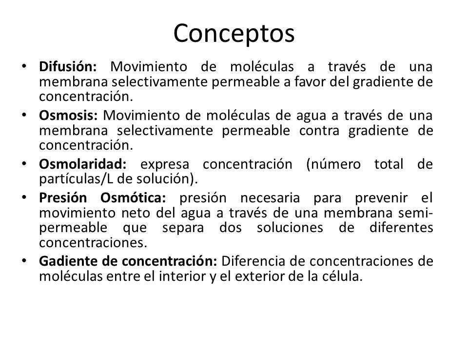 ConceptosDifusión: Movimiento de moléculas a través de una membrana selectivamente permeable a favor del gradiente de concentración.