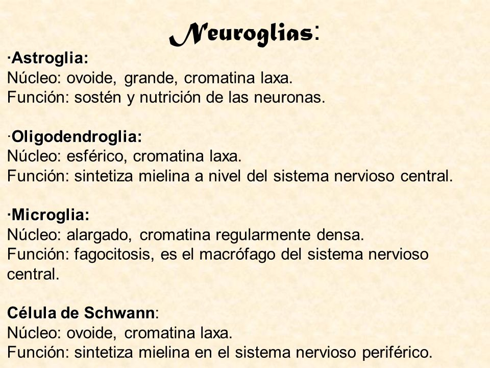 Neuroglias: