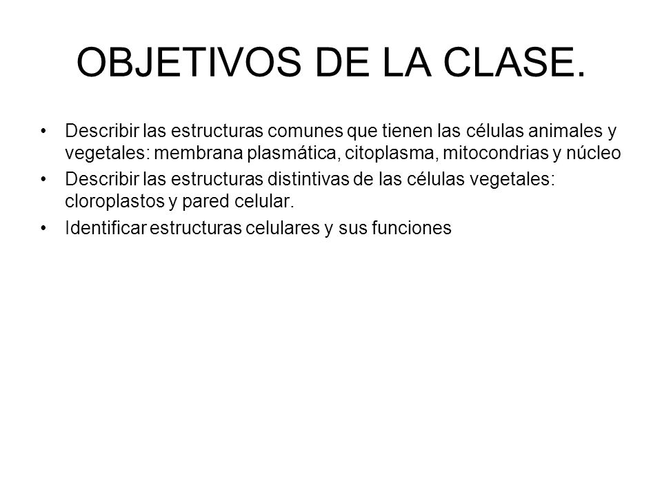 OBJETIVOS DE LA CLASE.