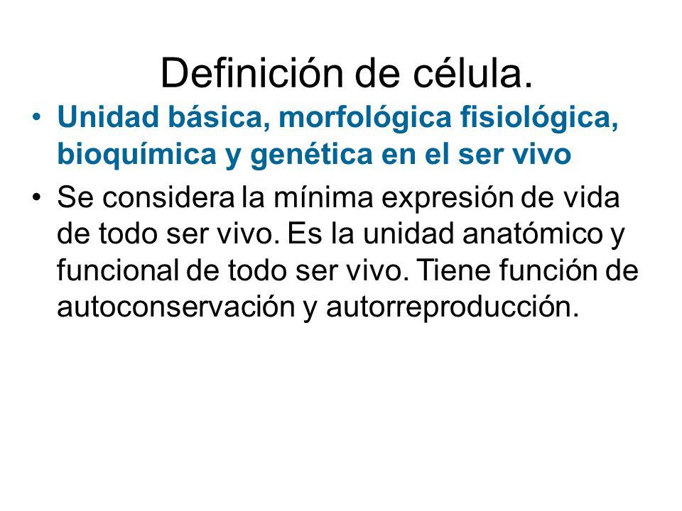 Definición de célula. Unidad básica, morfológica fisiológica, bioquímica y genética en el ser vivo.