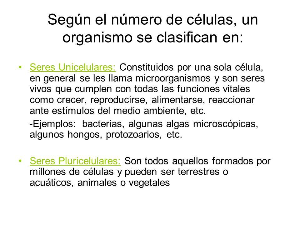 Según el número de células, un organismo se clasifican en: