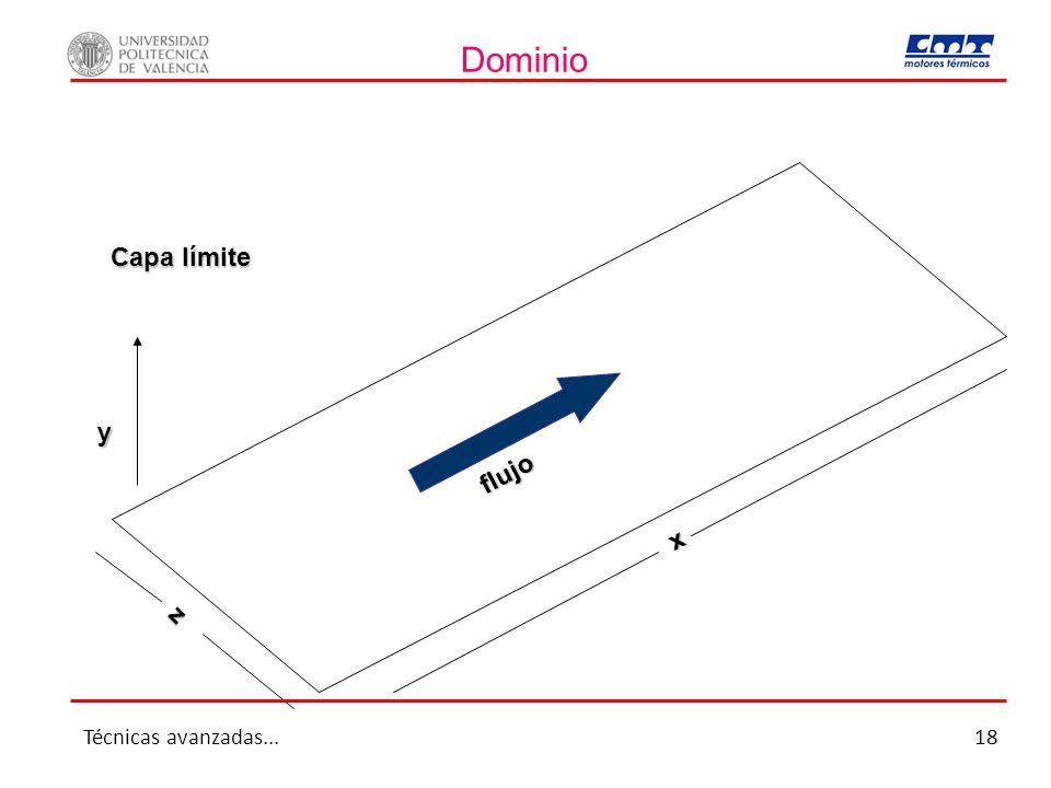 Dominio Capa límite y flujo x z Técnicas avanzadas... 18