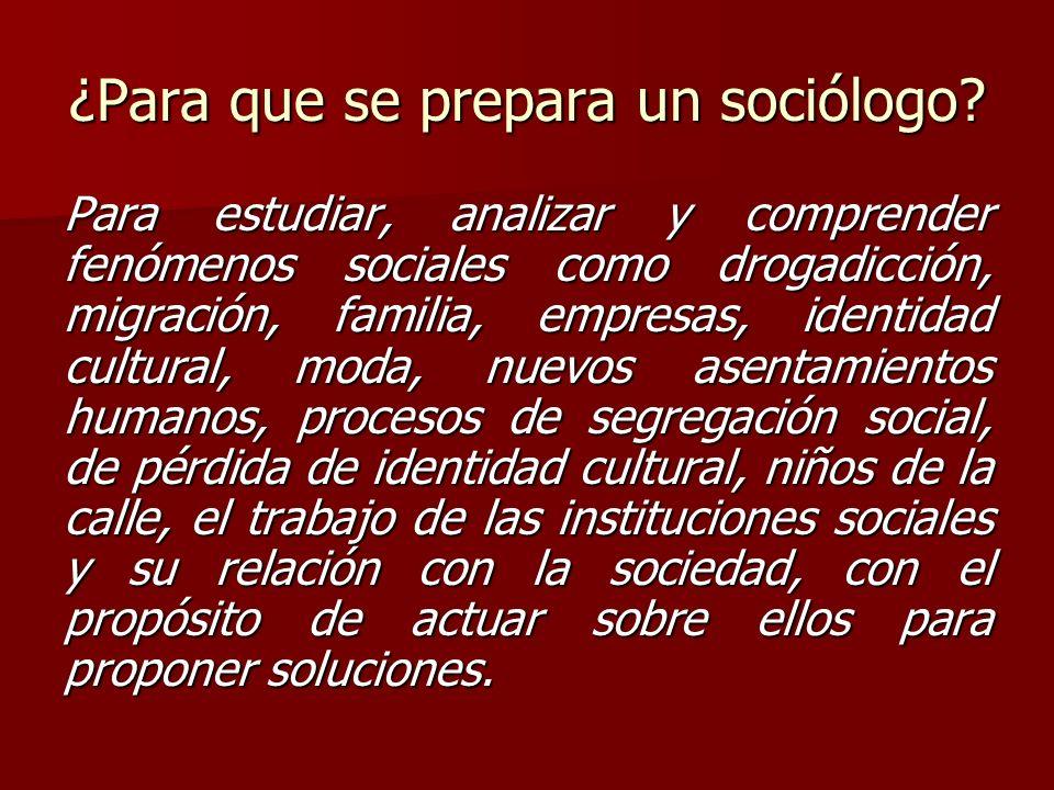 ¿Para que se prepara un sociólogo
