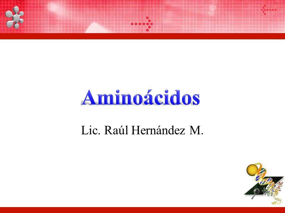 Aminoácidos Lic. Raúl Hernández M.