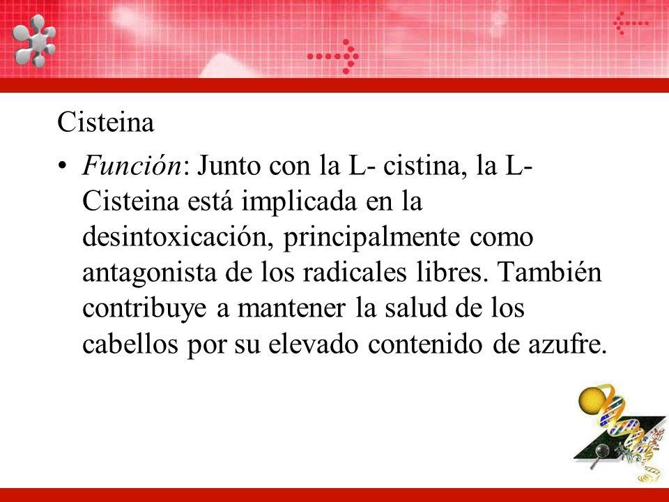 Cisteina