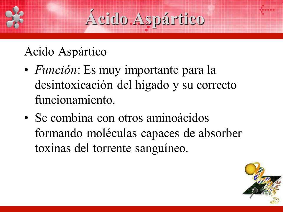 Ácido Aspártico Acido Aspártico