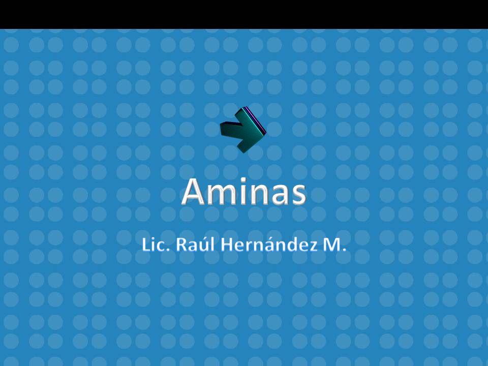Aminas Lic. Raúl Hernández M.