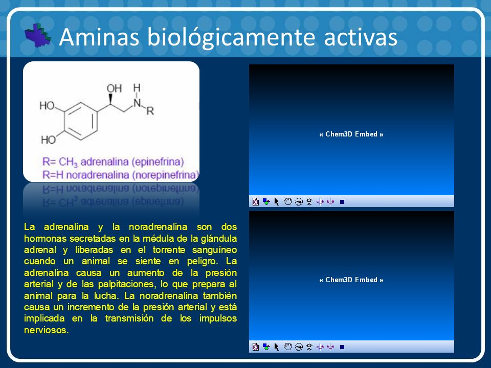 Aminas biológicamente activas