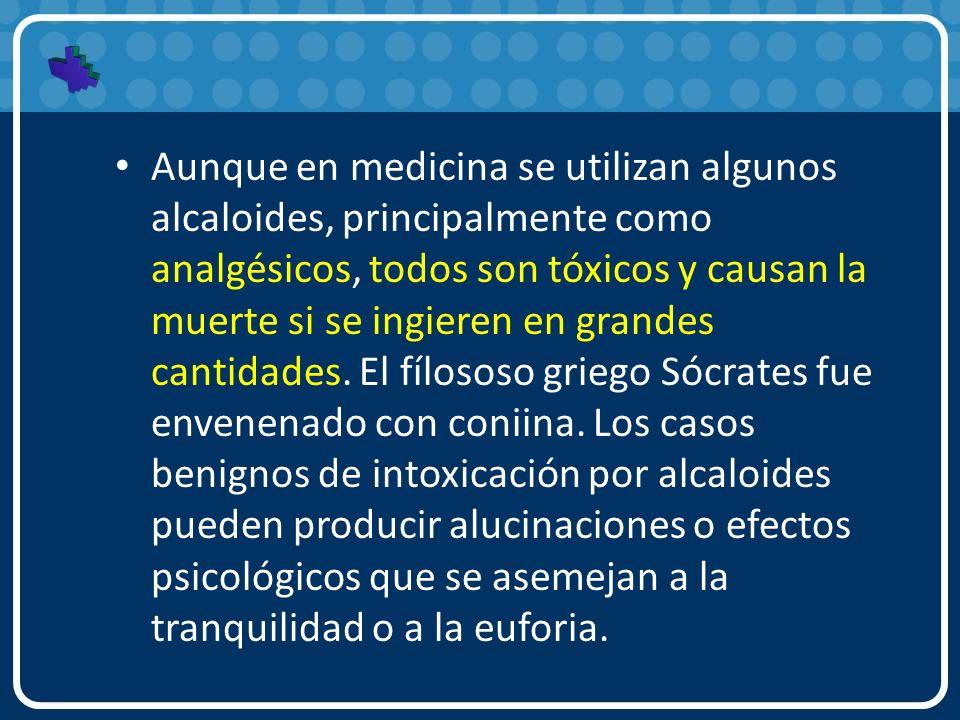 Aunque en medicina se utilizan algunos alcaloides, principalmente como analgésicos, todos son tóxicos y causan la muerte si se ingieren en grandes cantidades.