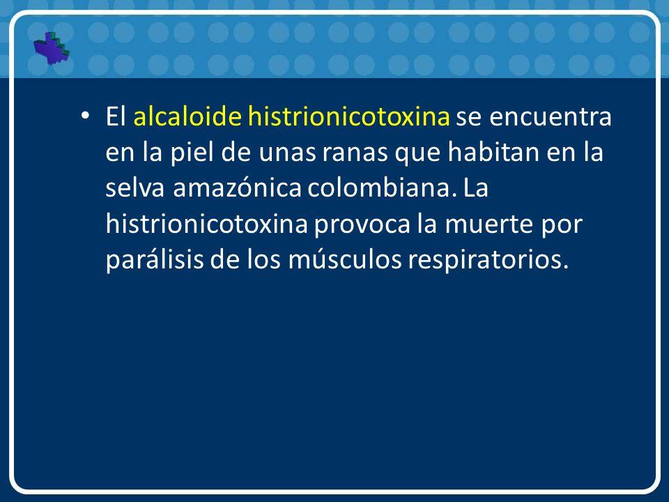 El alcaloide histrionicotoxina se encuentra en la piel de unas ranas que habitan en la selva amazónica colombiana.