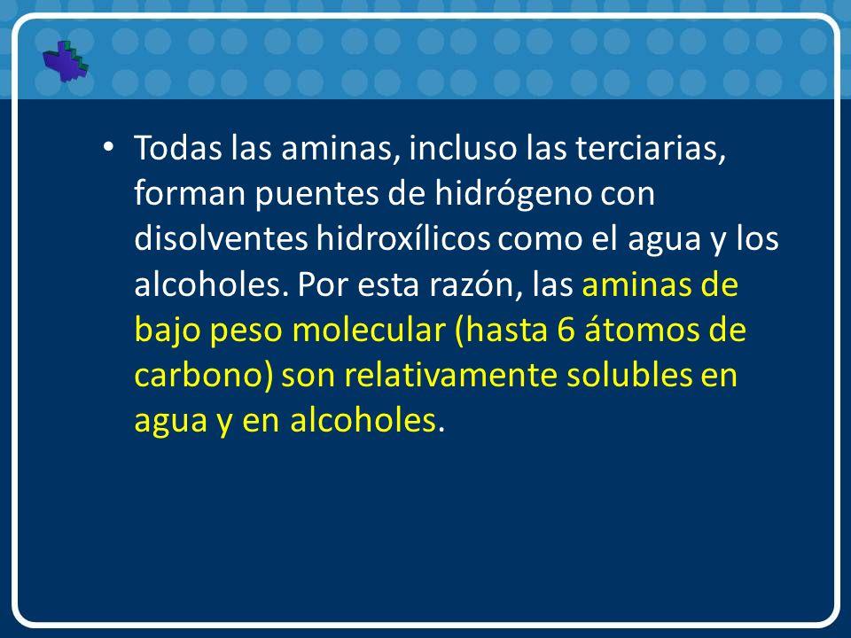Todas las aminas, incluso las terciarias, forman puentes de hidrógeno con disolventes hidroxílicos como el agua y los alcoholes.