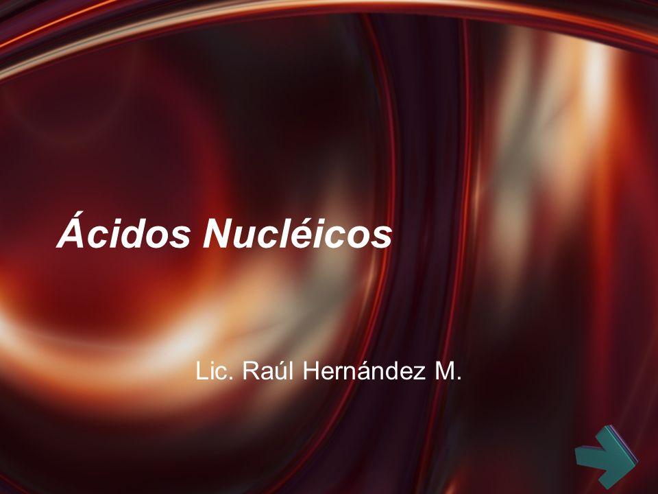 Ácidos Nucléicos Lic. Raúl Hernández M.