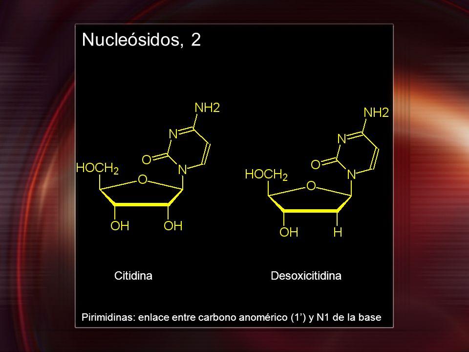 Nucleósidos, 2 Citidina Desoxicitidina