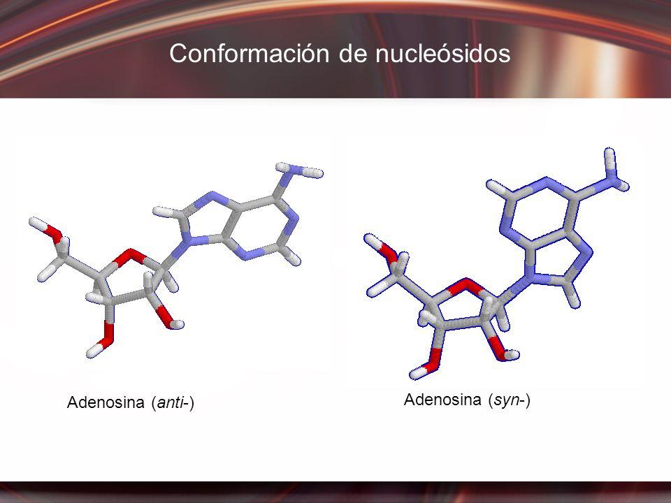 Conformación de nucleósidos