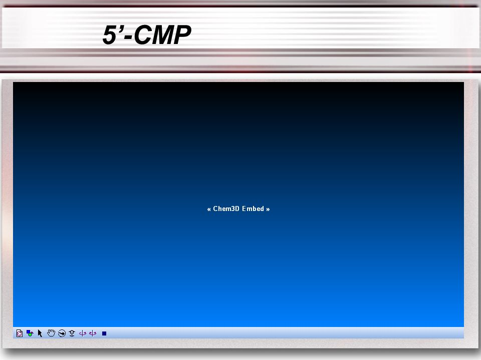 5'-CMP