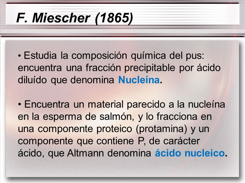 F. Miescher (1865)Estudia la composición química del pus: encuentra una fracción precipitable por ácido diluído que denomina Nucleína.