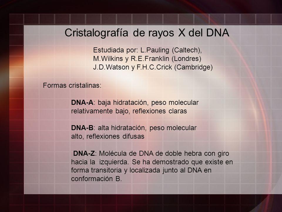 Cristalografía de rayos X del DNA