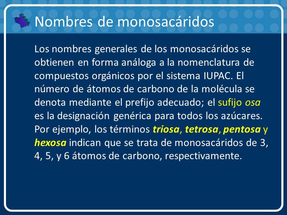 Nombres de monosacáridos